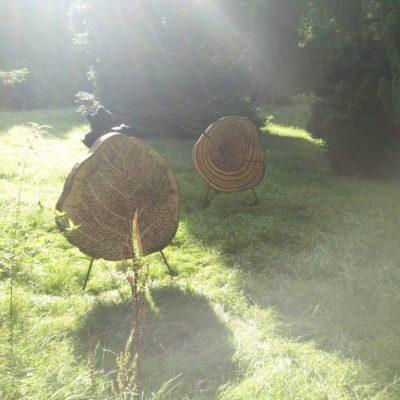 'Beuklijn' Von Gimborn Arboretum, Doorn