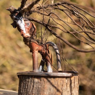 'My little pony'Foto: Toon van der Werf