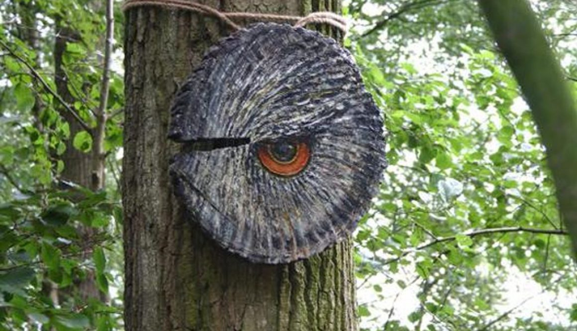 Ogenblik in het bos Uil copy